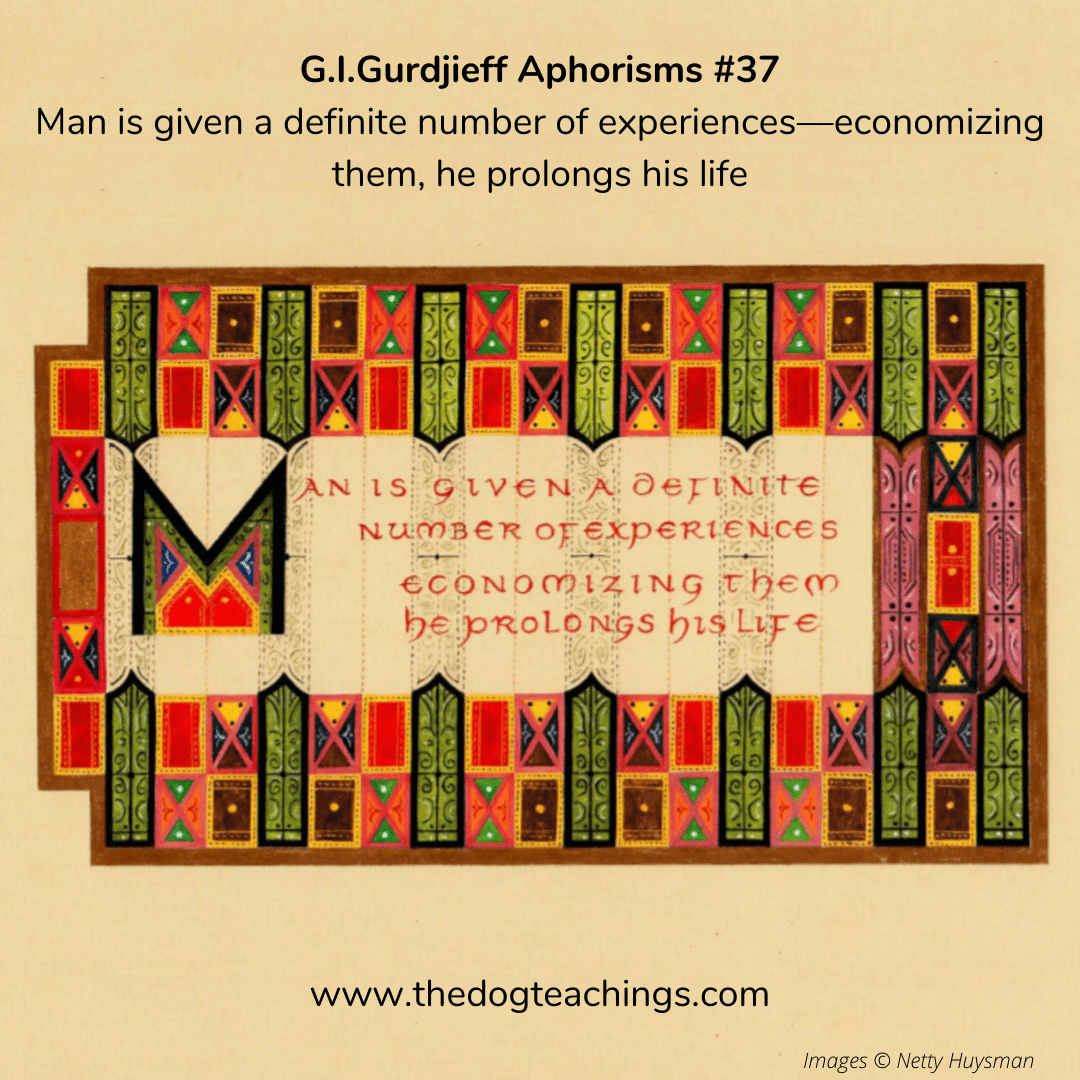 Gurdjieff Aphorism #37 - Man is given a definite number of experiences - economizing them, he prolongs his life.